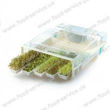 Проращиватель зерен и семян электрический EasyGreen Sprouter